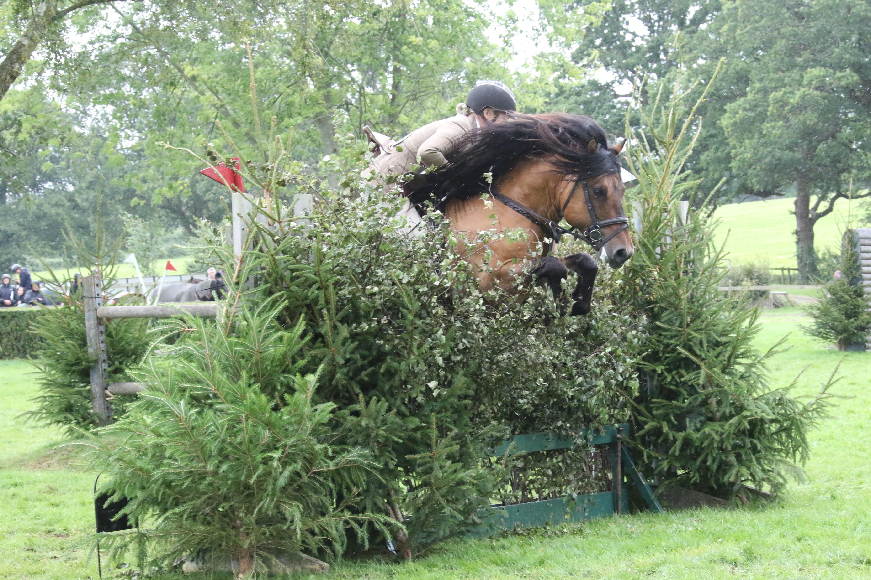 Highland Pony Society Judges' Seminar
