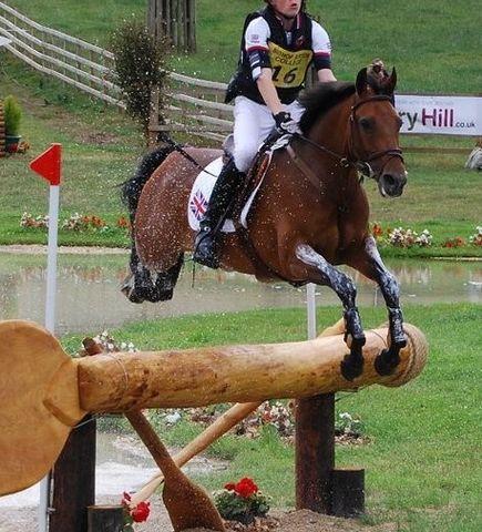 British Riding Pony Performance Scheme